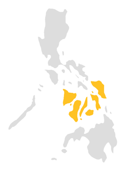Popular Destinations in Visayas