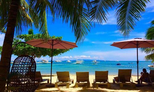 beach-umbrellas-bohol